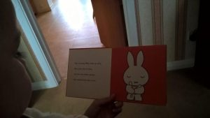 Storytelling child listening to Miffy Literacy Content Writer My Words Work For You